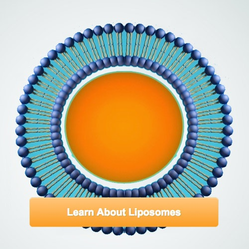 learn-about-liposomes